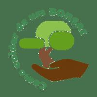 Logo como cuidar de um bonsai